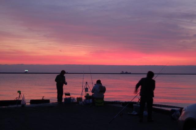 11月の海釣りの楽しみ方をご紹介!秋の夜長は海もおすすめ