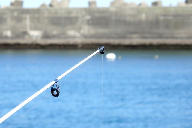 堤防の王者チヌ!人気の釣り方フカセ釣りの方法を詳しく解説