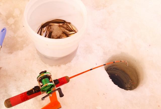 小学生もできるワカサギ釣りの魅力とおすすめな釣り竿を解説