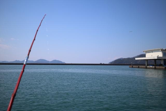 釣り初心者必見!初めての釣りに最適な場所を徹底解析!