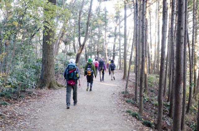 ハイキングに最適なリュックサックの選び方は何を重視する?
