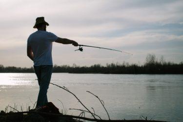 サヨリ釣りに挑戦!ねらい目の時期はいつ?釣り方は!?