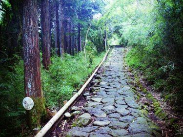 ハイキングを冬でも楽しもう!関東のおすすめコースをご紹介
