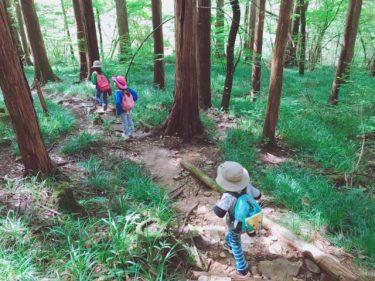 ハイキングに必要な持ち物とは?子供に必要な道具をご紹介!