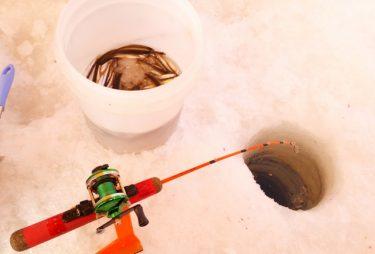 ワカサギ釣りは初心者でも楽しめる!最適な時期や釣り方は?