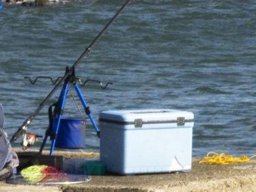 釣り用のクーラーボックスの特徴とは?小型でも高機能!